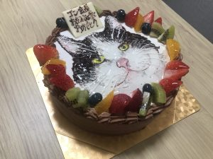 cake-0820